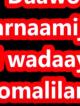guulwadeyaasha somaliland
